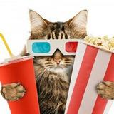 Кинозал | Фильмы и Кино