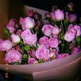 fotodlyastoris | Unsorted