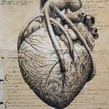 medacademyco | Unsorted